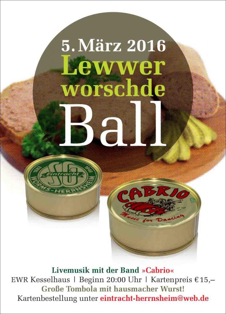 SGE-Ball-Anzeige 125x90mm 09.02.15.indd